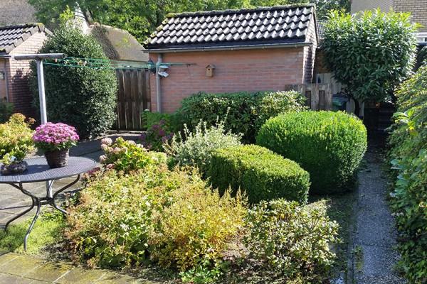 Aanleg tuin bejaardenwoning oosterlaken tuin groen onderhoud - Maak een eigentijdse tuin aan ...